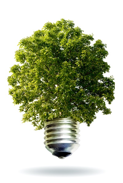 Green Deal Public Eco Scheme